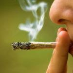 Does Marijuana Harm Your Heart?