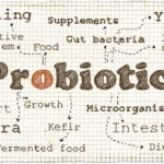 Should I Take a Probiotic Daily?