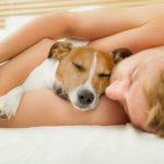 Sleeping Tips | Natural Ways to Fall Asleep Fast