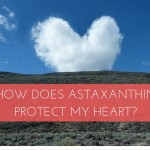 How Does Astaxanthin Protect My Heart?