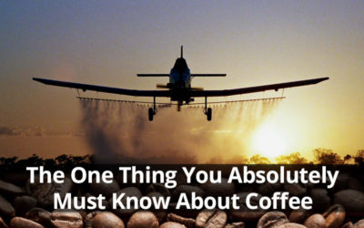 The One Thing You Absolutely Must Know About Coffee