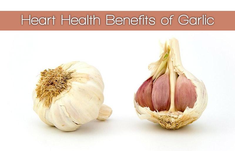 Heart Health Benefits of Garlic