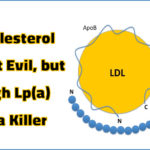 Cholesterol is not Evil but High Lp(a) is a Killer