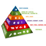 The Drs. Wolfson Paleo Pyramid